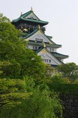 新緑 大阪城