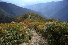 色づいた登山道