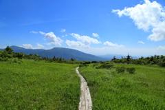 八甲田の湿原歩き