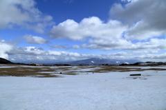 雪に覆われた草原