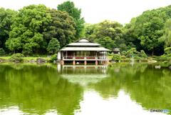 The 日本庭園