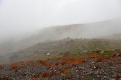 霧の中の世界