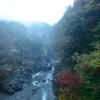 霧の鳩ノ巣渓谷
