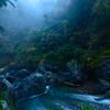 雨上がりの鳩ノ巣渓谷