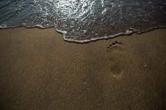 海を見に行こう -足跡