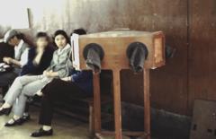 中国1980-40021