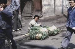 中国1980-40043