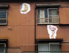 三日月とフラミンゴが住むアパート