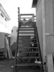作業エリアの階段