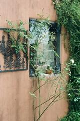 フィルム散歩 洒落たパン屋の壁