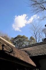 藁ぶき屋根と雲
