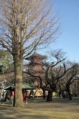 法華経寺の冬