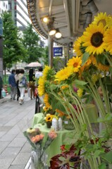 四丁目の花屋