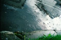 雨に流れて。