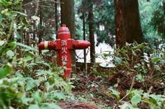 森の消火栓