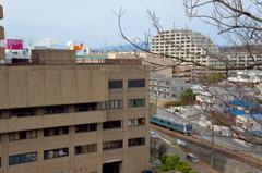 野鳥のさえずる街 港南台