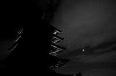 月下五重塔