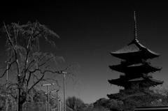 月光の五重塔