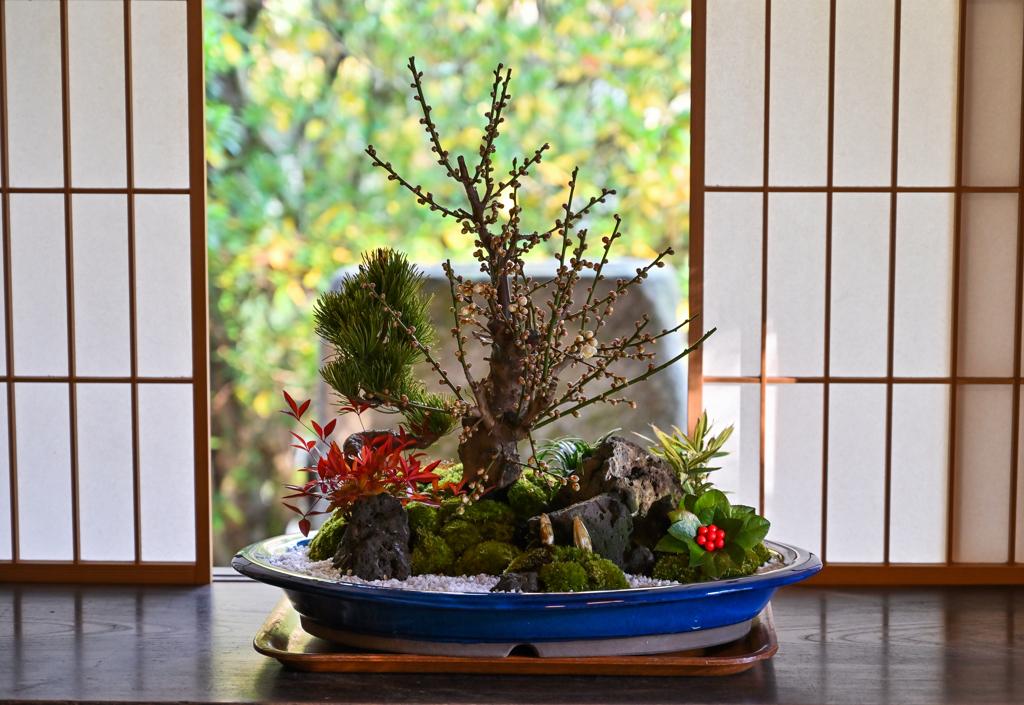 正月飾り 盆栽