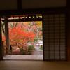 宝筐院 紅葉2