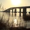新春の大橋