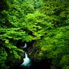 水と緑の國