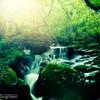 陽が射す渓谷