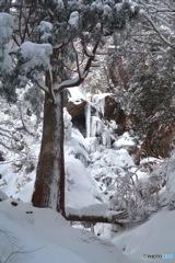 氷瀑の大黒滝