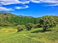 椿大神社の御神体入道ヶ岳Ⅲ