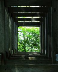 初夏への窓