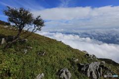 カルストで雲海Ⅱ