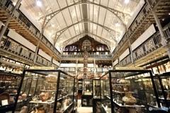オックスフォード大学自然史博物館5