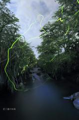 和灯の軌跡