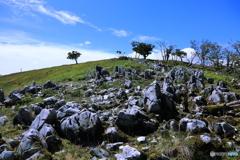 カルスト地形「奥の平」