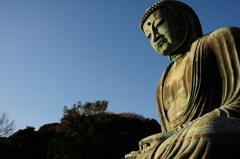 鎌倉の大仏8