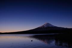 Fuji 夜明け
