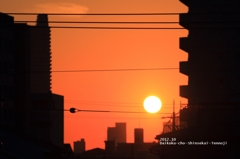 #20 Sunnyside