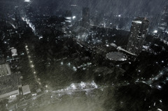 TOKYO Snowstorm