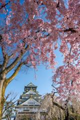 枝垂れて春