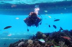 #14 Diver