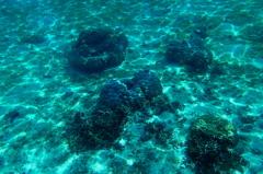 #13 Seas Beneath