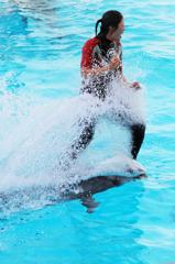 Go Go Splash !