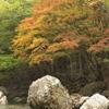 深山の秋Ⅱ