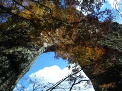 空と石門と紅葉と