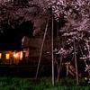 樹齢1100年と住む家