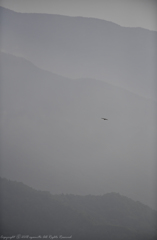 Silence gliding