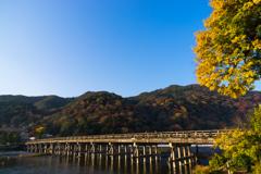 秋色渡月橋