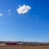 小湊鉄道の似合う風景