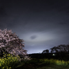 桜と雲の先に