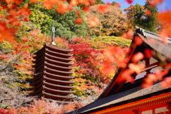 秋色談山神社